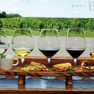Cheers! Celebrating Ontario Wines and Local Flavours   Sample photo #1
